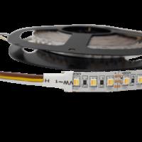CCT Split Chip LED Flex